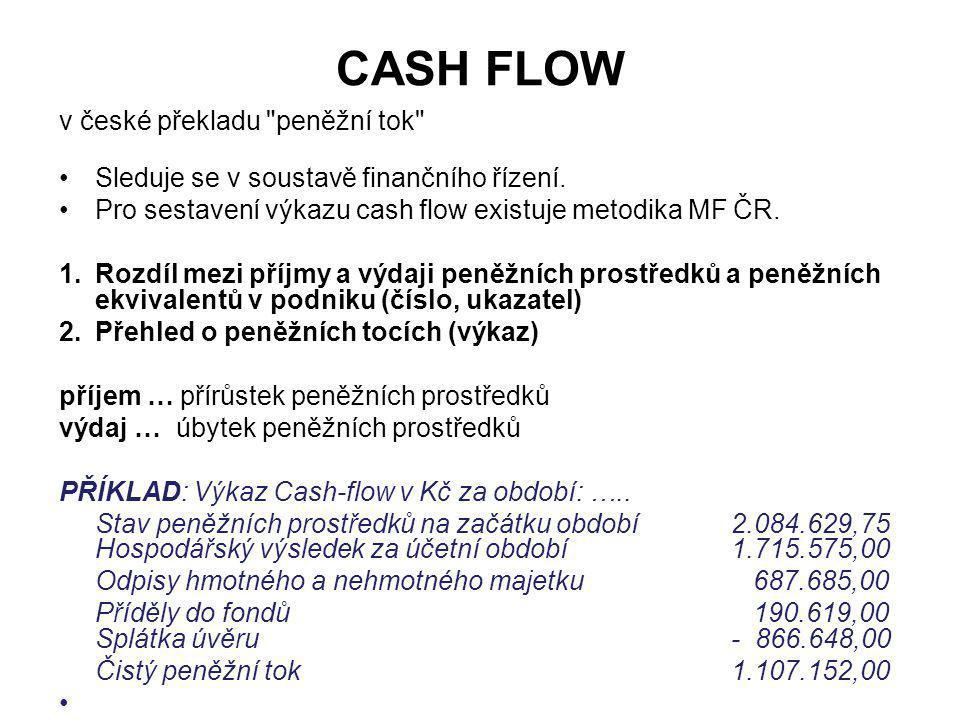 CASH FLOW v české překladu peněžní tok