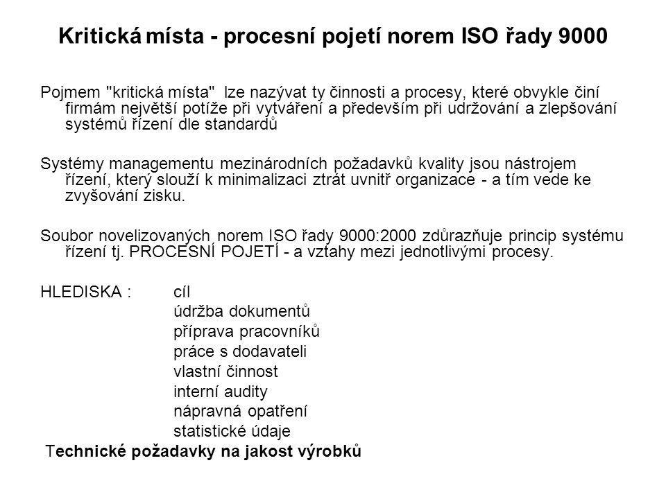 Kritická místa - procesní pojetí norem ISO řady 9000