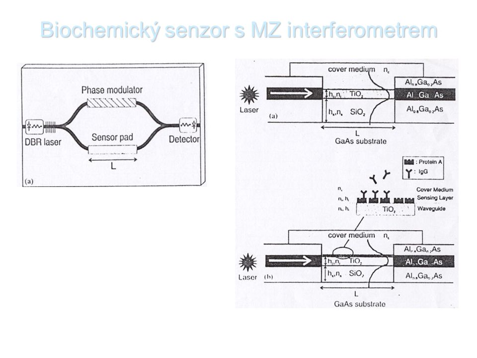 Biochemický senzor s MZ interferometrem