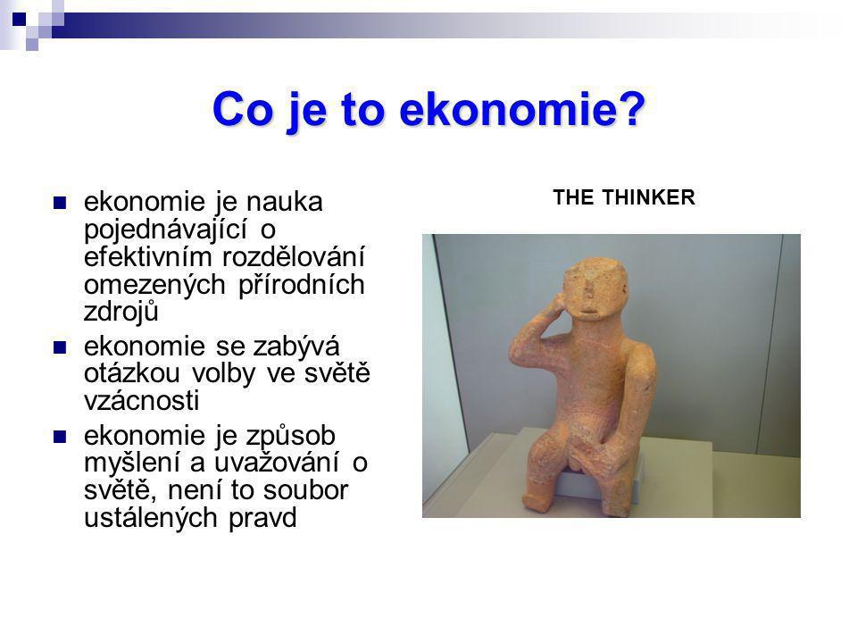 Co je to ekonomie THE THINKER. ekonomie je nauka pojednávající o efektivním rozdělování omezených přírodních zdrojů.