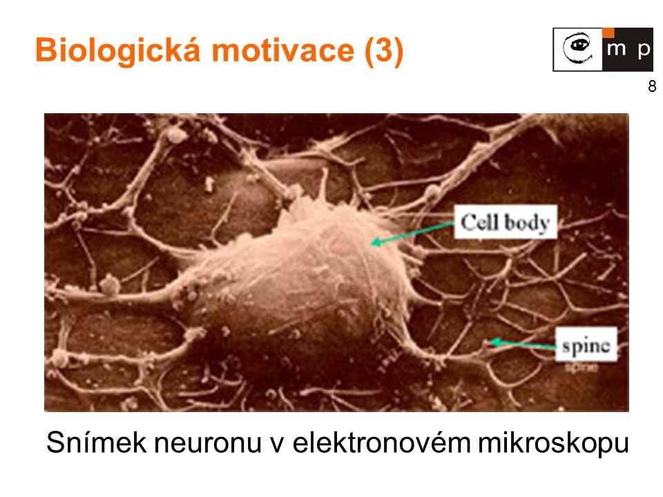 Biologická motivace (3)