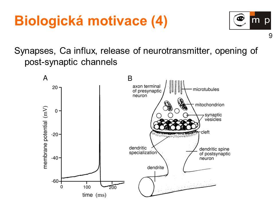 Biologická motivace (4)