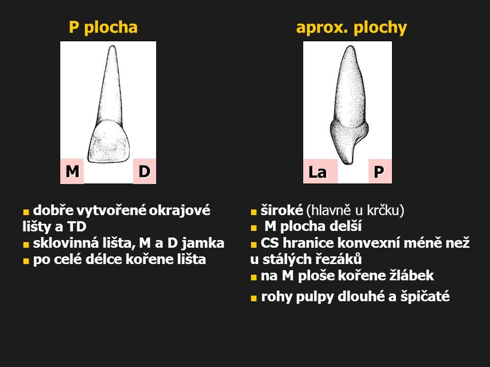 P plocha aprox. plochy M D La P ■ dobře vytvořené okrajové lišty a TD