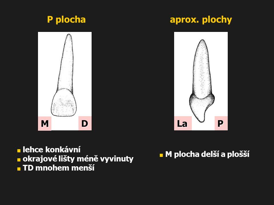 P plocha aprox. plochy M D La P ■ lehce konkávní