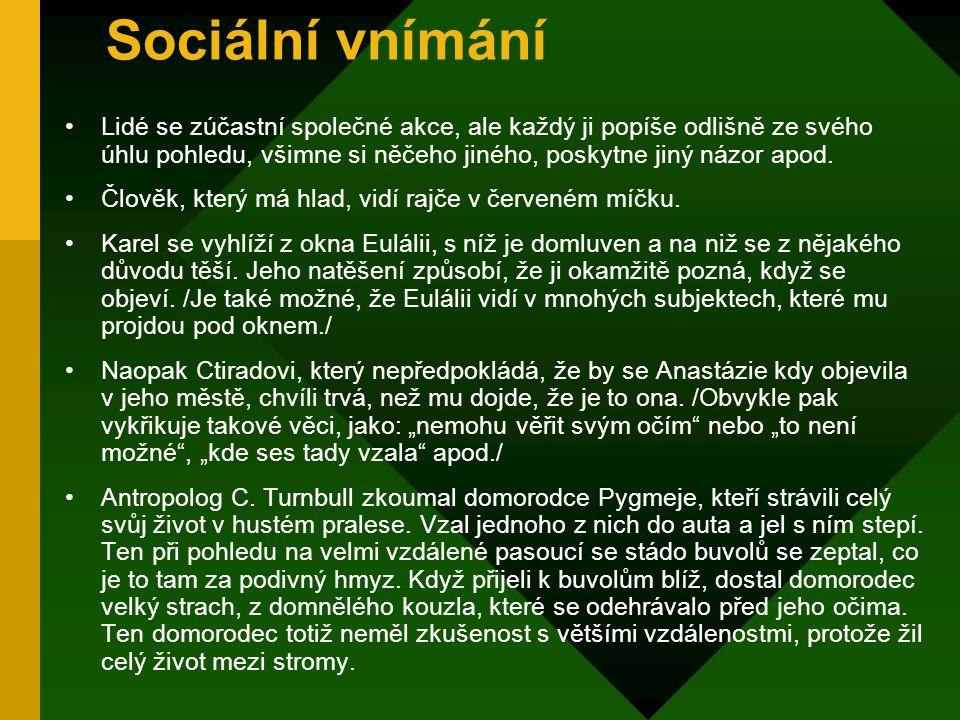 Sociální vnímání