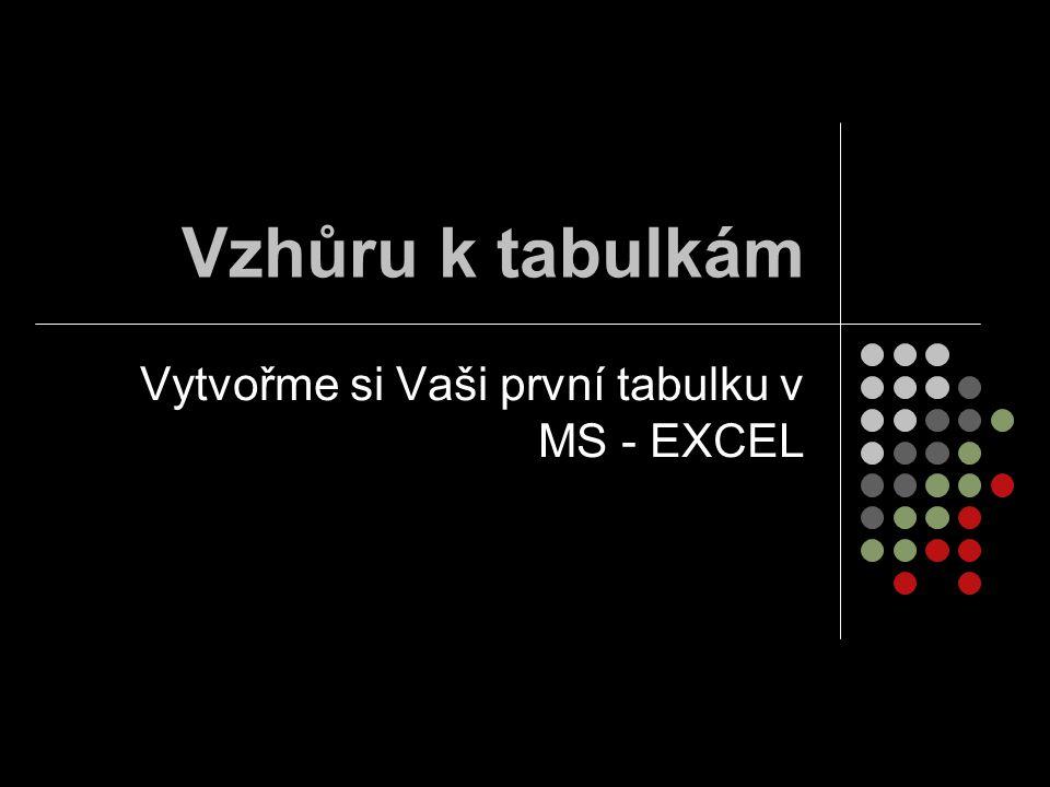 Vytvořme si Vaši první tabulku v MS - EXCEL