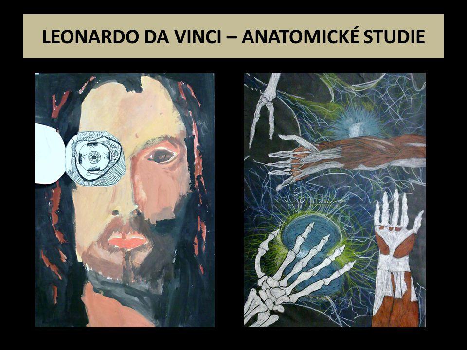 LEONARDO DA VINCI – ANATOMICKÉ STUDIE
