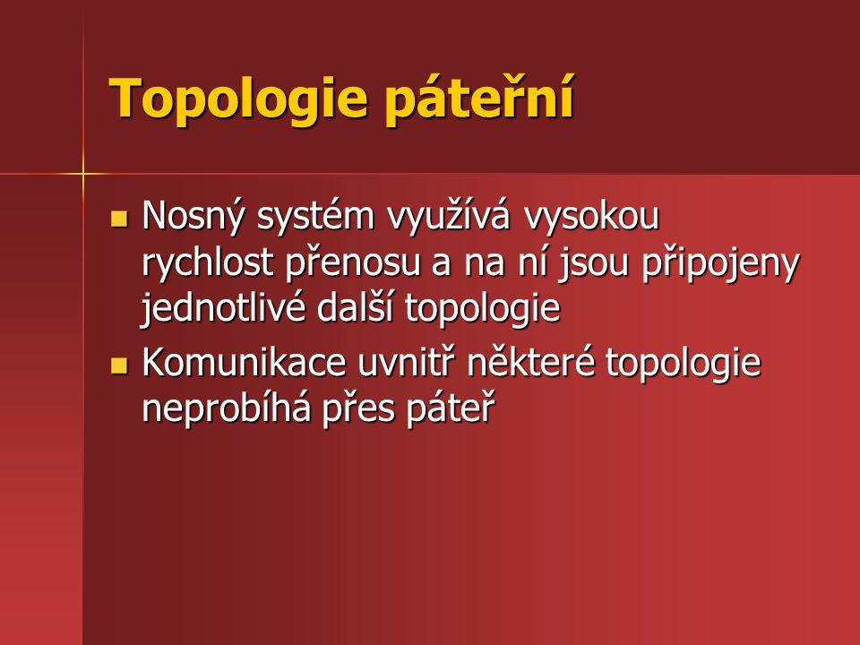 Topologie páteřní Nosný systém využívá vysokou rychlost přenosu a na ní jsou připojeny jednotlivé další topologie.