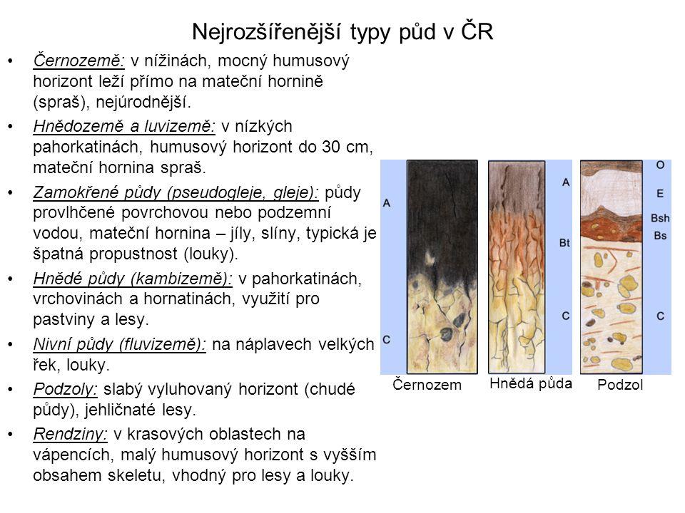 Nejrozšířenější typy půd v ČR