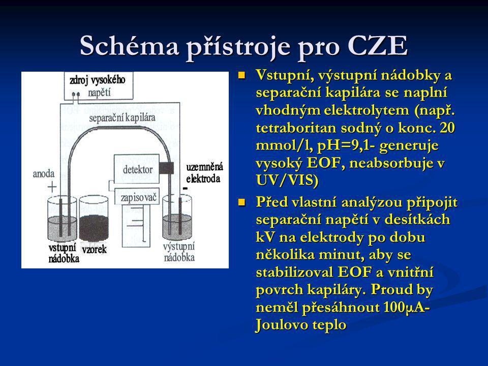 Schéma přístroje pro CZE