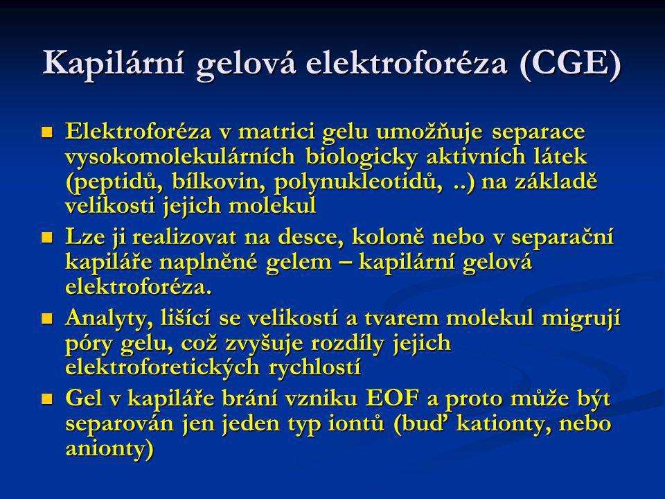 Kapilární gelová elektroforéza (CGE)