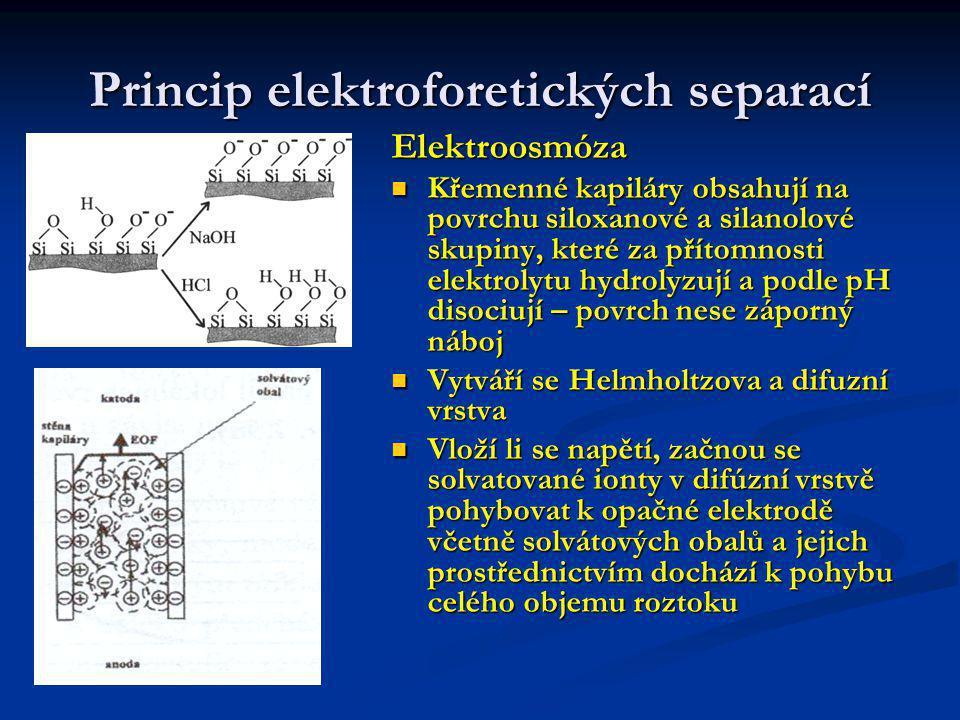 Princip elektroforetických separací