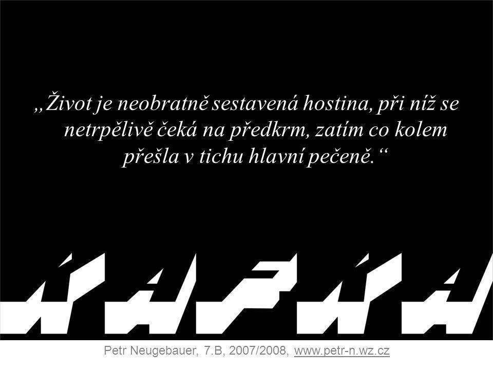 Petr Neugebauer, 7.B, 2007/2008, www.petr-n.wz.cz