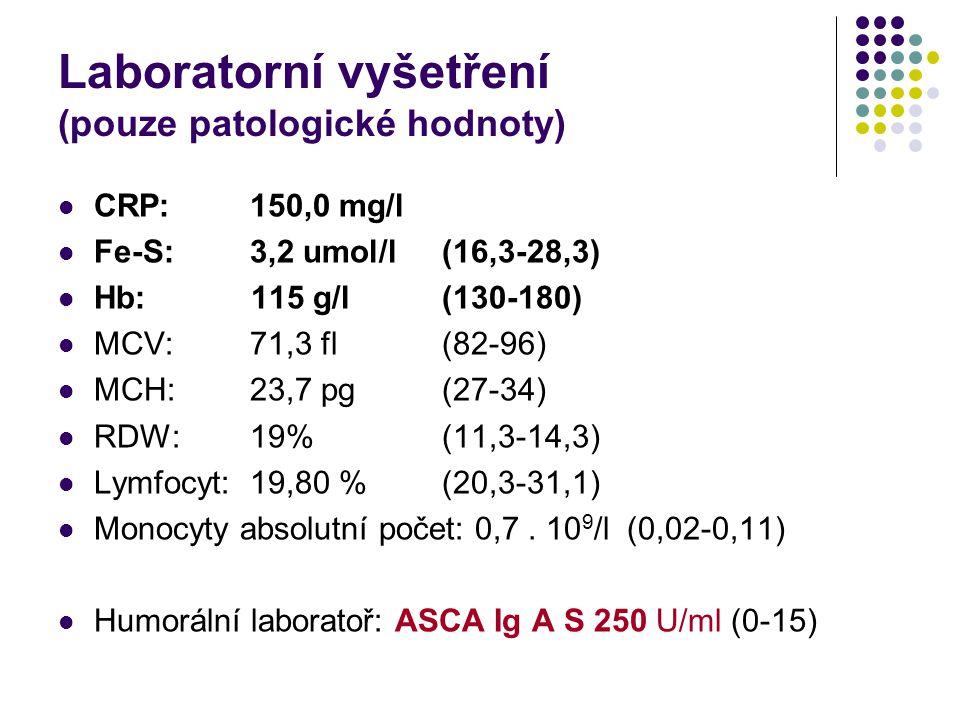 Laboratorní vyšetření (pouze patologické hodnoty)