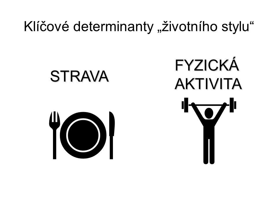 """Klíčové determinanty """"životního stylu"""