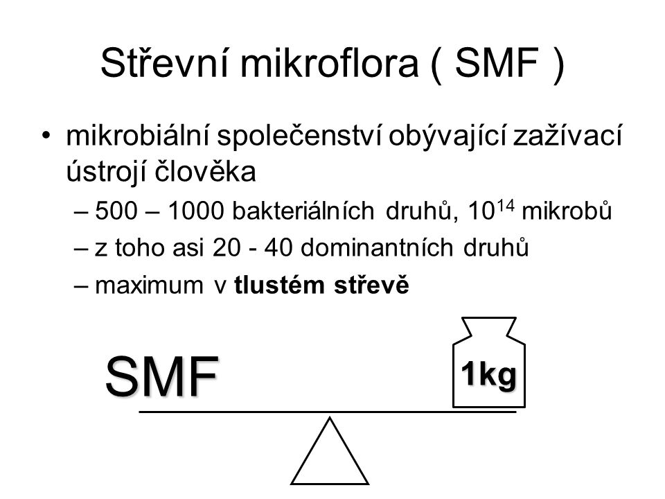 Střevní mikroflora ( SMF )