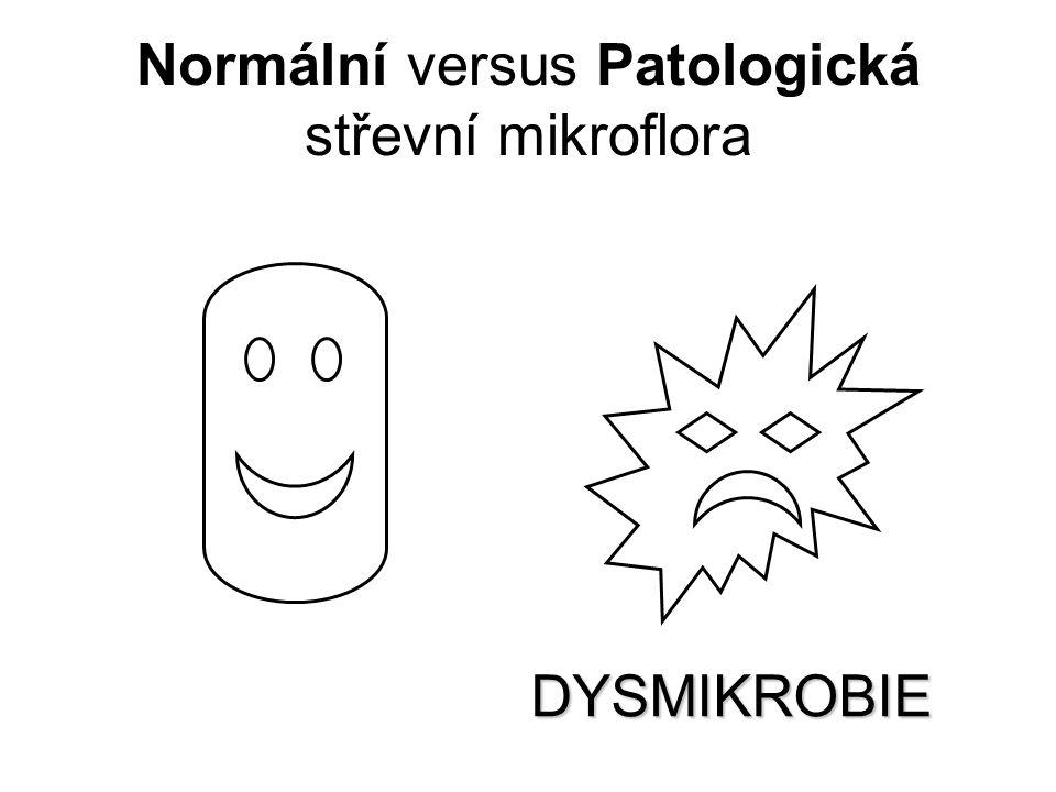 Normální versus Patologická střevní mikroflora