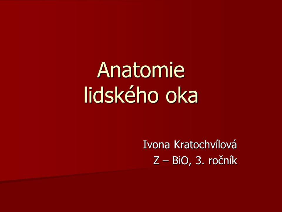 Ivona Kratochvílová Z – BiO, 3. ročník