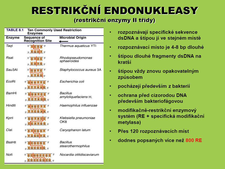 RESTRIKČNÍ ENDONUKLEASY (restrikční enzymy II třídy)