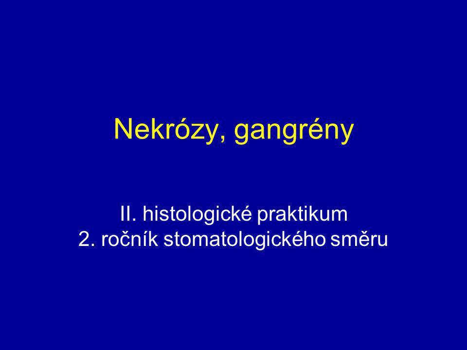 II. histologické praktikum 2. ročník stomatologického směru