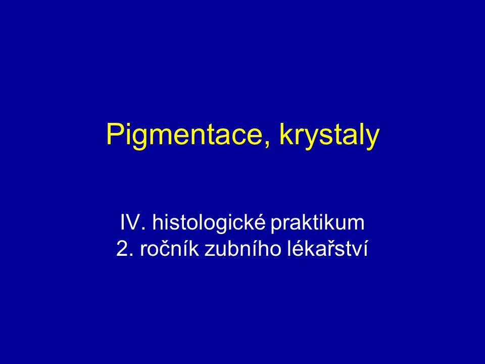 IV. histologické praktikum 2. ročník zubního lékařství