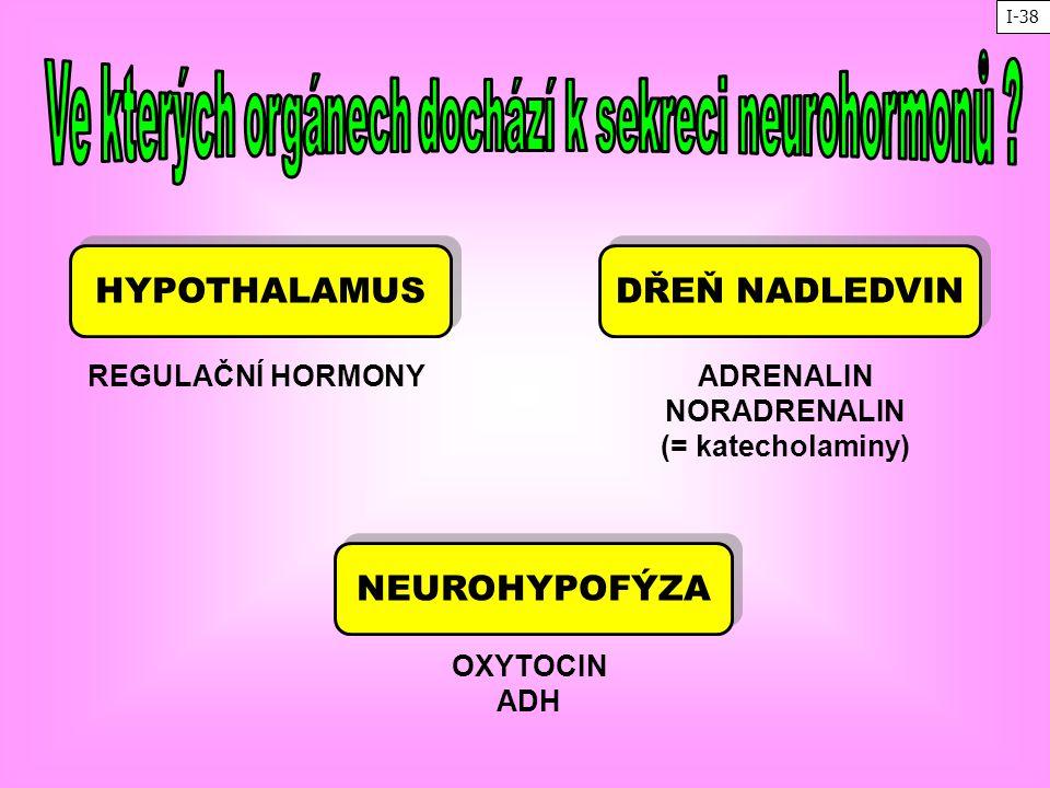 Ve kterých orgánech dochází k sekreci neurohormonů