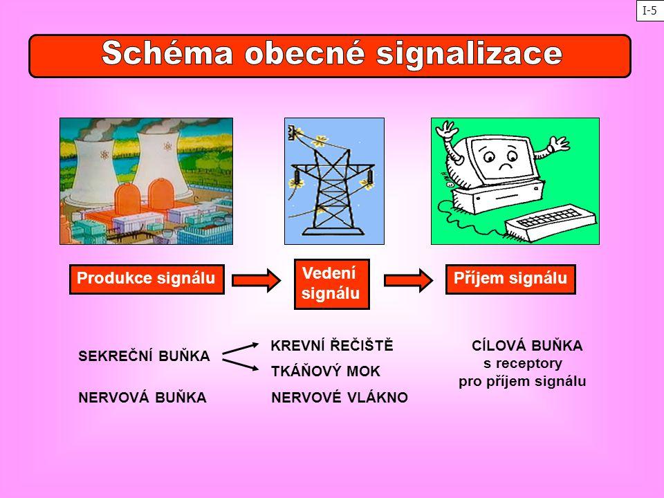 Schéma obecné signalizace