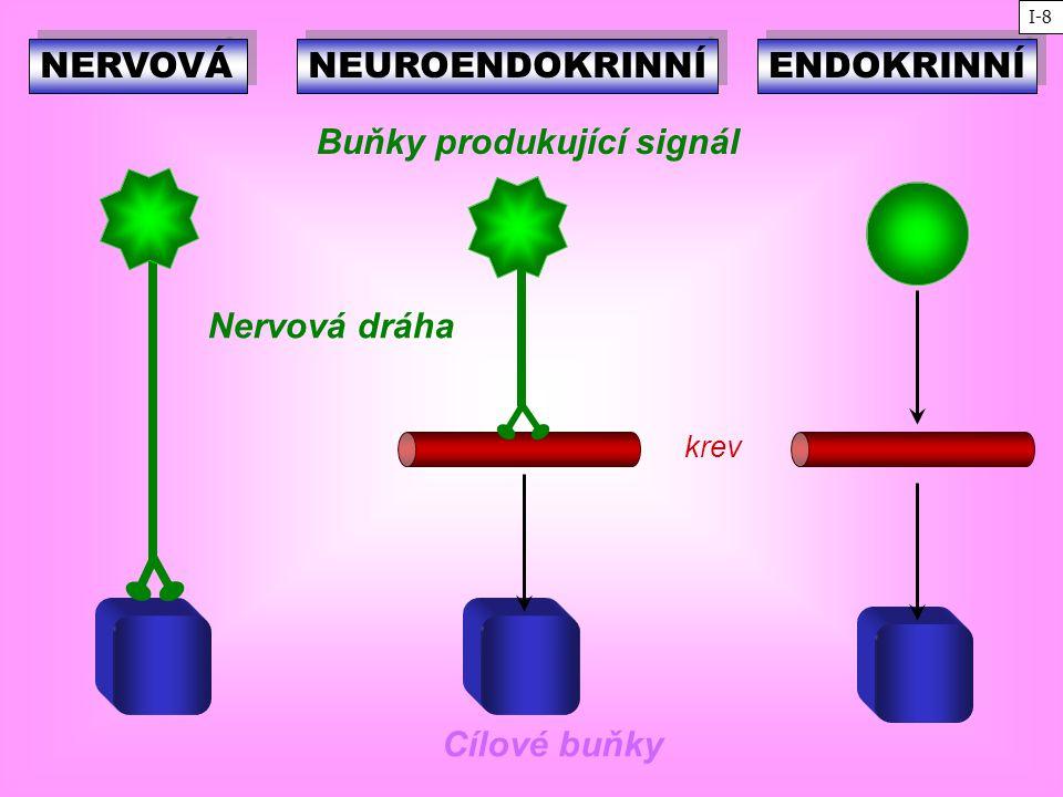 Buňky produkující signál