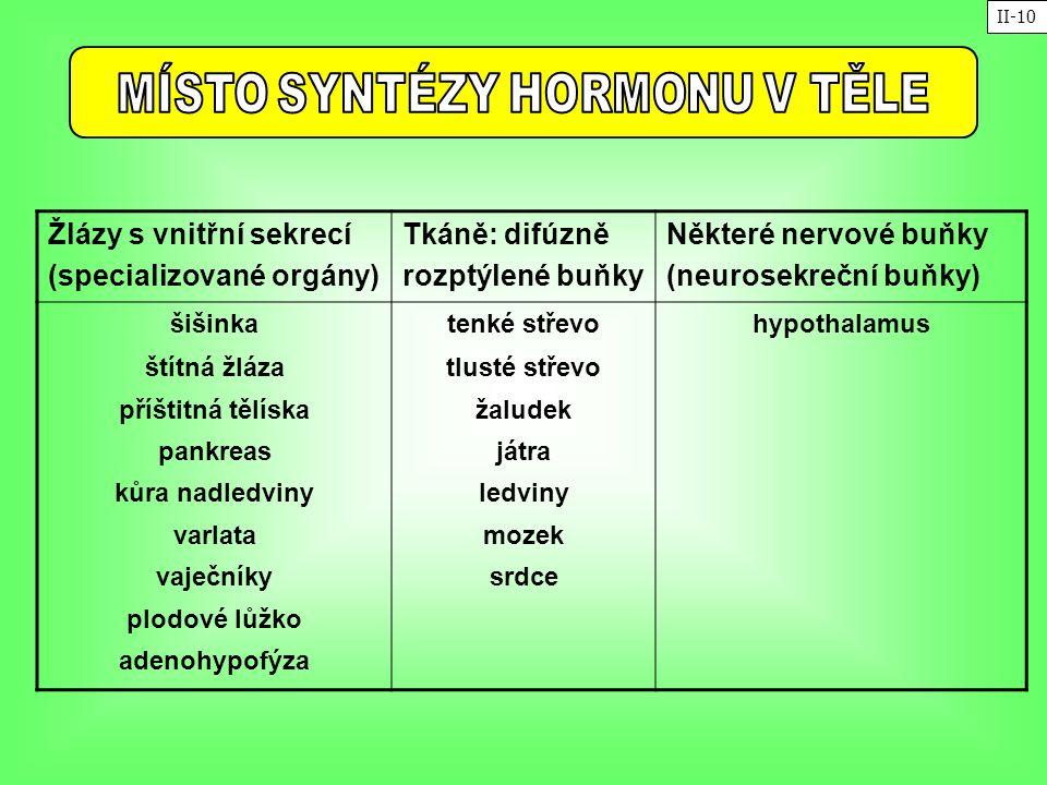 MÍSTO SYNTÉZY HORMONU V TĚLE