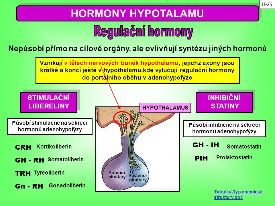 HORMONY HYPOTALAMU Regulační hormony