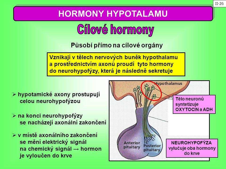 HORMONY HYPOTALAMU Cílové hormony Působí přímo na cílové orgány