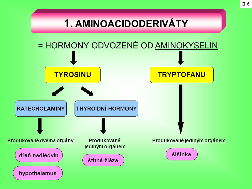= HORMONY ODVOZENÉ OD AMINOKYSELIN