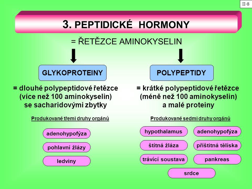 3. PEPTIDICKÉ HORMONY = ŘETĚZCE AMINOKYSELIN GLYKOPROTEINY POLYPEPTIDY