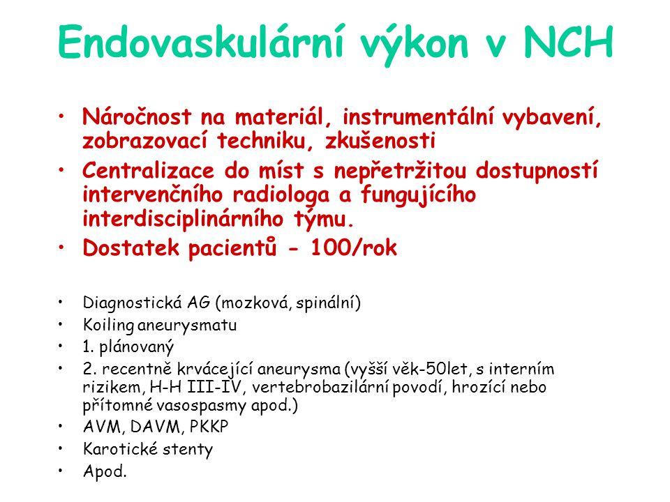 Endovaskulární výkon v NCH