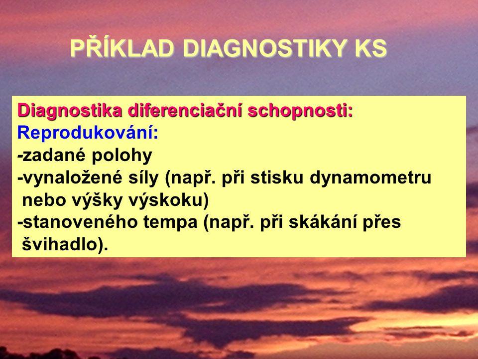 PŘÍKLAD DIAGNOSTIKY KS