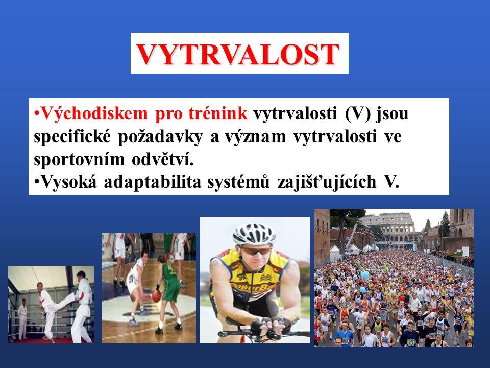 VYTRVALOST Východiskem pro trénink vytrvalosti (V) jsou