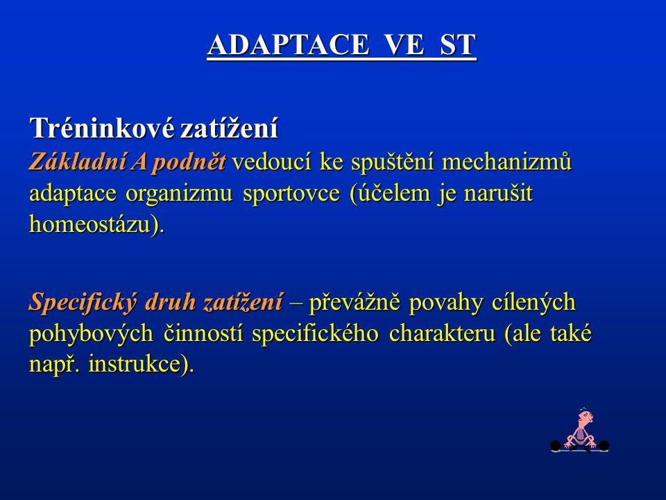 ADAPTACE VE ST Tréninkové zatížení Základní A podnět vedoucí ke spuštění mechanizmů adaptace organizmu sportovce (účelem je narušit homeostázu).