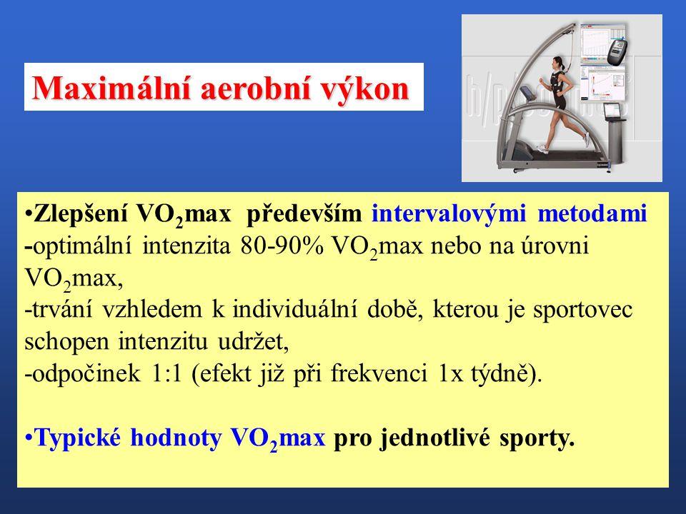Maximální aerobní výkon