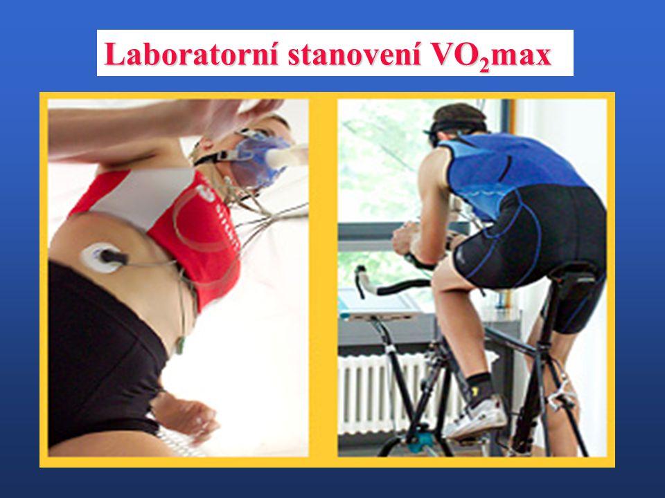 Laboratorní stanovení VO2max