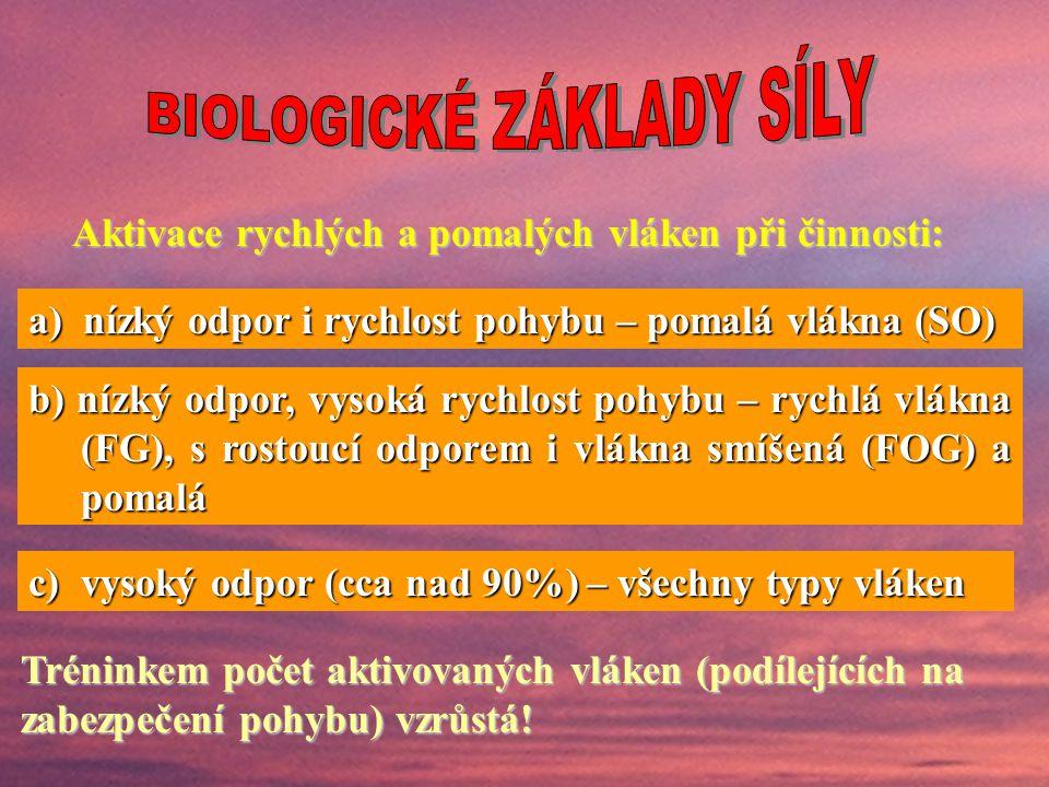 BIOLOGICKÉ ZÁKLADY SÍLY