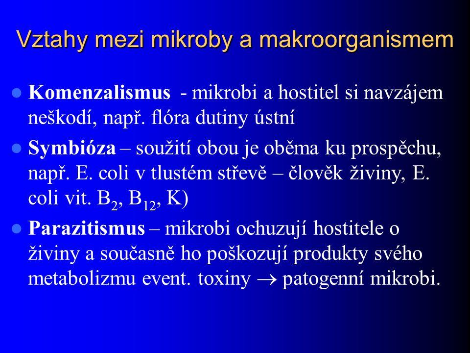 Vztahy mezi mikroby a makroorganismem