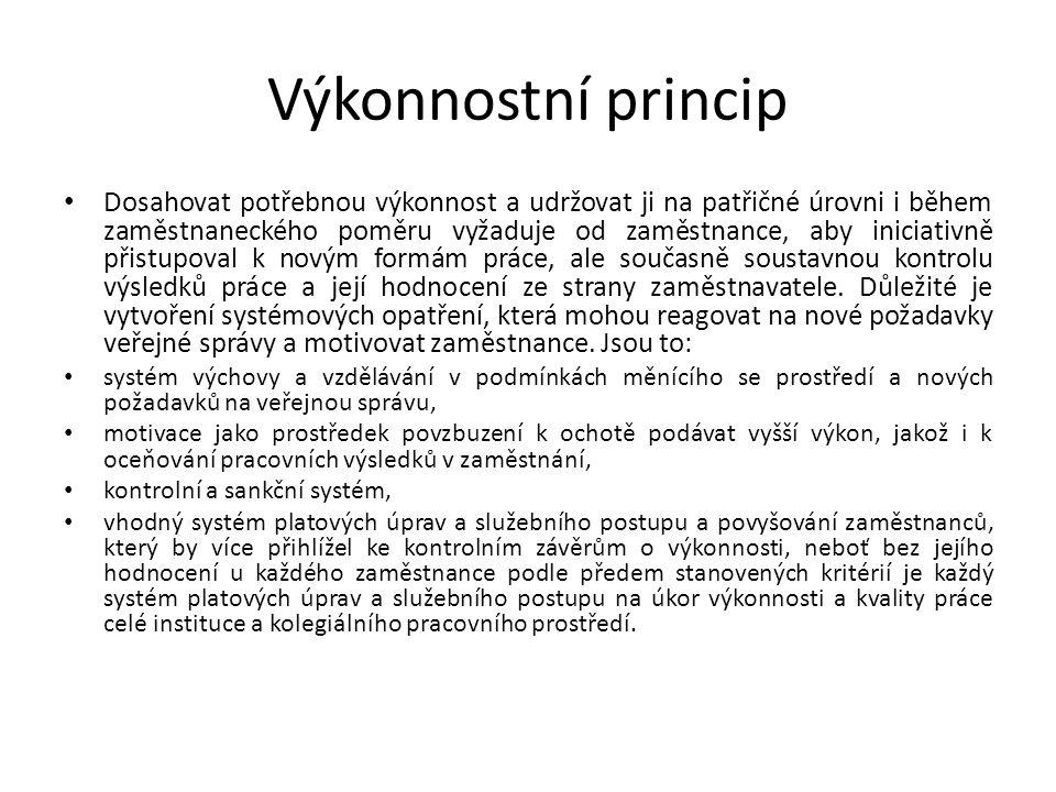 Výkonnostní princip