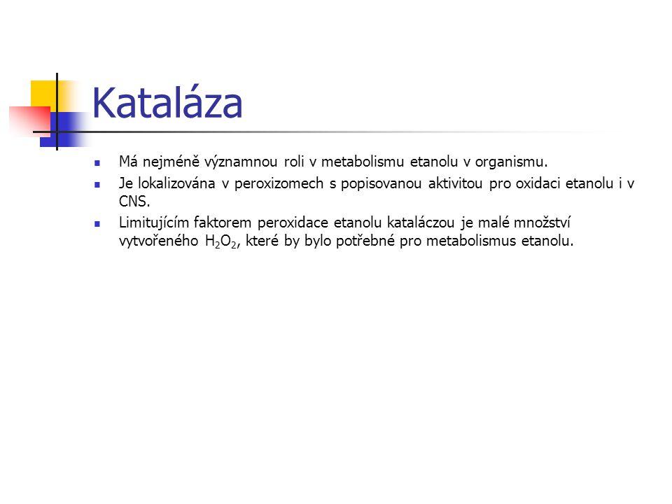 Kataláza Má nejméně významnou roli v metabolismu etanolu v organismu.