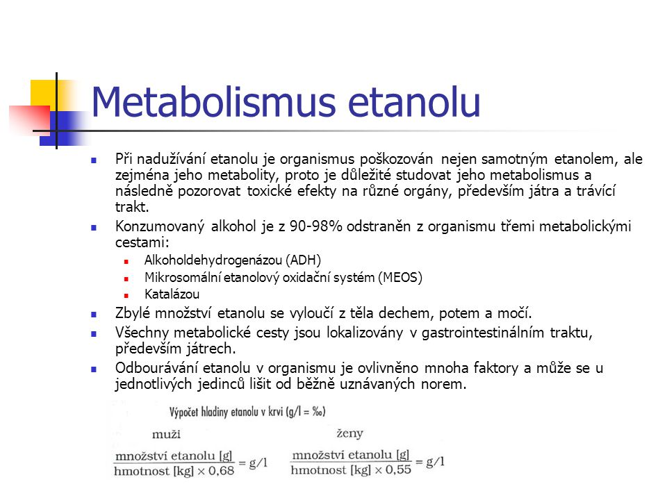 Metabolismus etanolu