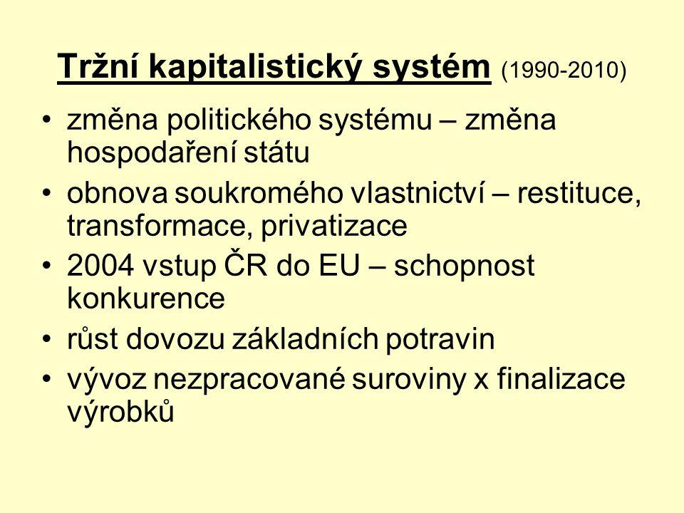 Tržní kapitalistický systém (1990-2010)
