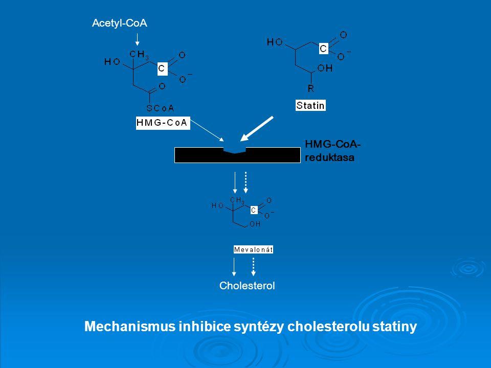 Mechanismus inhibice syntézy cholesterolu statiny