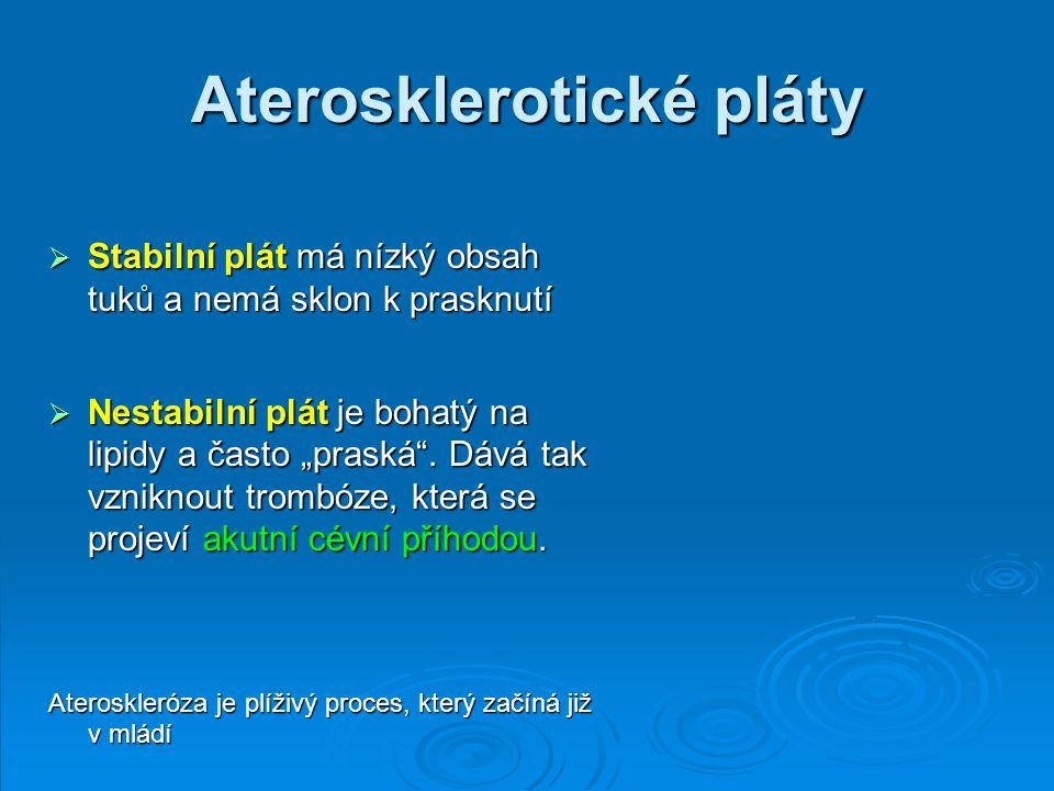 Aterosklerotické pláty