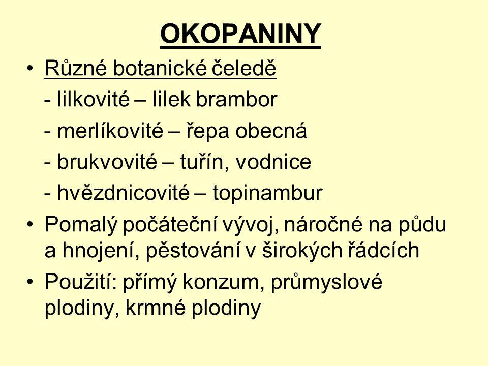 OKOPANINY Různé botanické čeledě - lilkovité – lilek brambor
