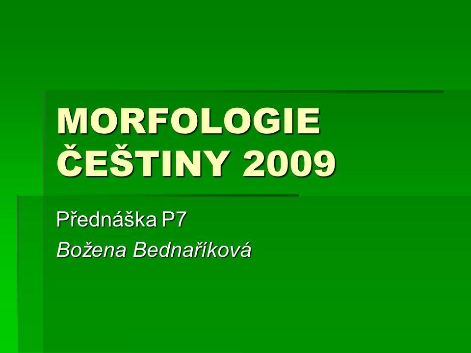 Přednáška P7 Božena Bednaříková