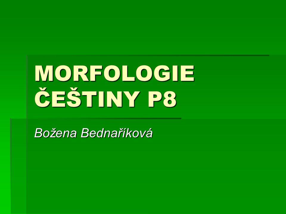 MORFOLOGIE ČEŠTINY P8 Božena Bednaříková